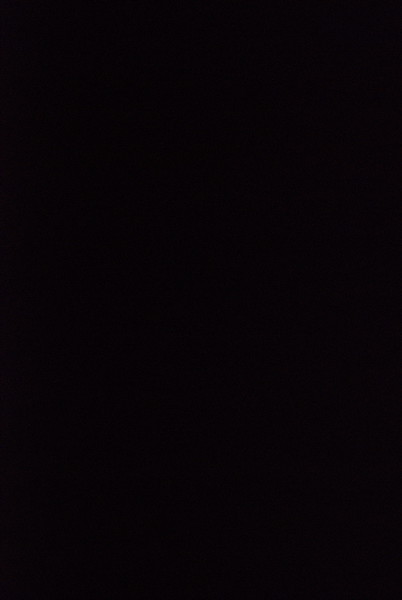 2012-10-04-Light-the-Night-Walk_002.jpg