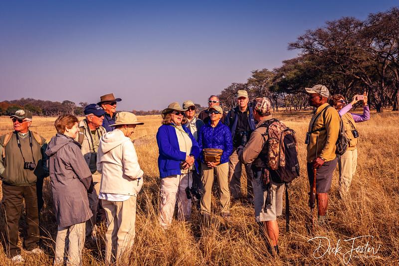 Walking Safari at Hwange Safari Lodge