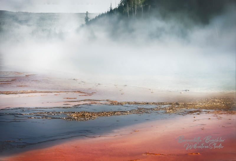 Mist Rising_Grand Prismatic_Yellowstone National Park.jpg