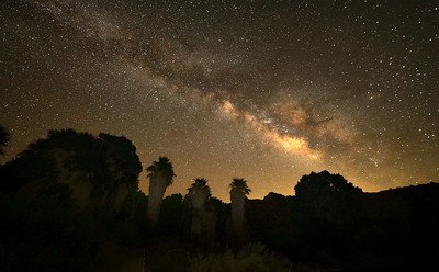 Limited Edition - Astrophotography