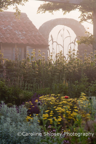 The Organic Gardens, Holt Farm-2739.jpg