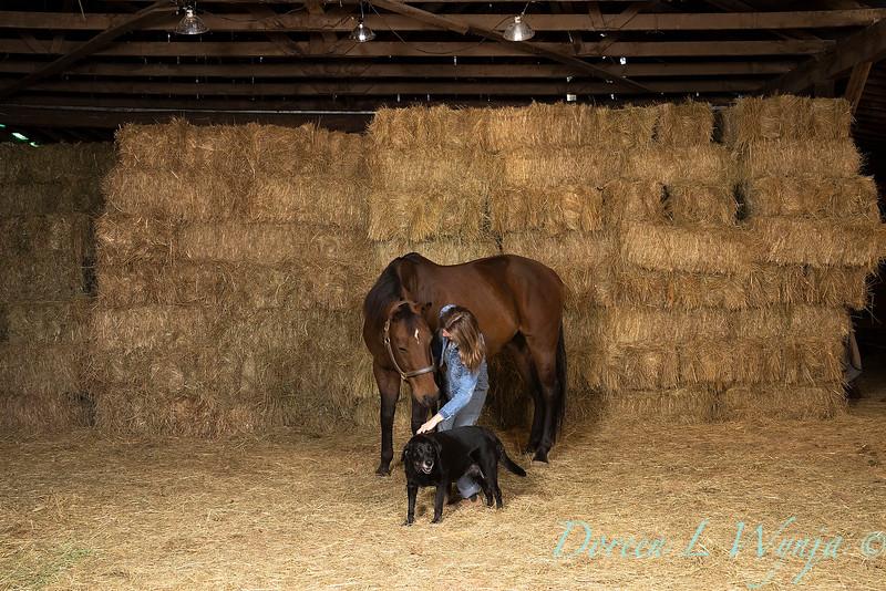 Horse family portrait_103.jpg