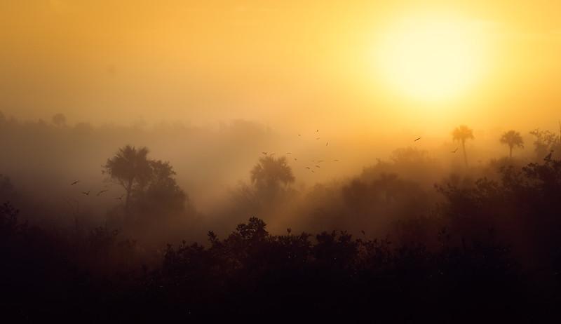Sunrise&Sunset-102.jpg