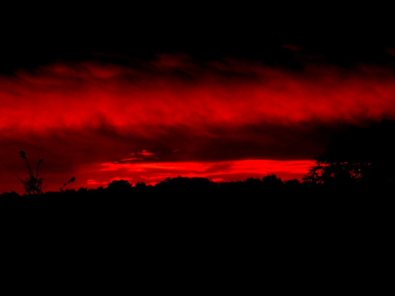 786 sunset.jpg