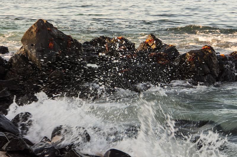 Surf and Rocks at Punta Suárez