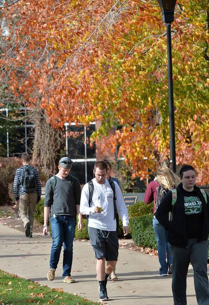 campus3184.jpg