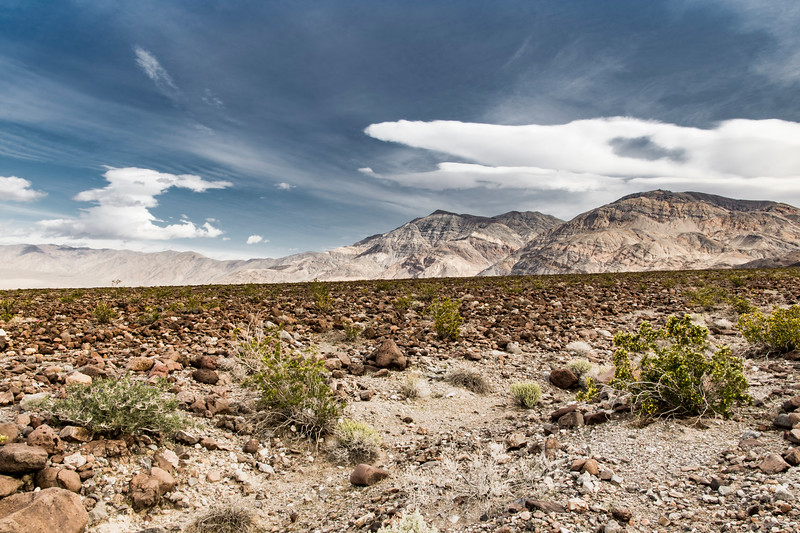 Death-Valley-west-valley-exit-spring.jpg