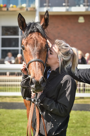 Beverley Minster Fillies' Novice Auction Stakes