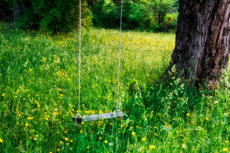 Inv #48 Forgotten swing.jpg