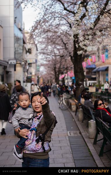 Japan_Tokyo_Apr_2016-161.jpg