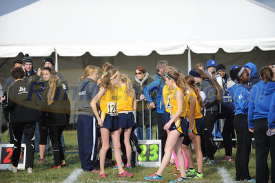 Starting Line - D2 Girls 2015 MHSAA LP XC