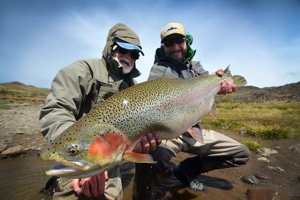 Big Fish 2015
