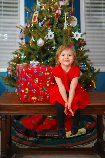Ford Family Christmas 2015-2.jpg