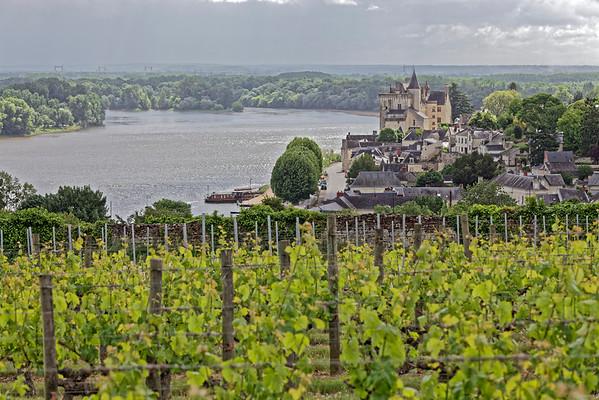 Val de Loire - Loire Chateau Vignes