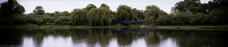 Chicago Botanical Gardens_5760x1200-9.jpg