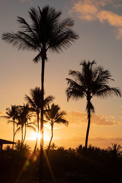 Travel_Hawaii_03052020_0003.jpg