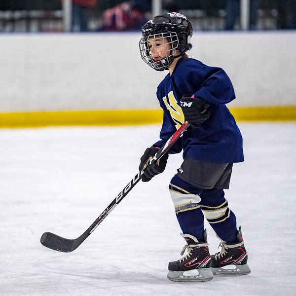 2019-02-04-Ryan-Naughton-Hockey-109.jpg