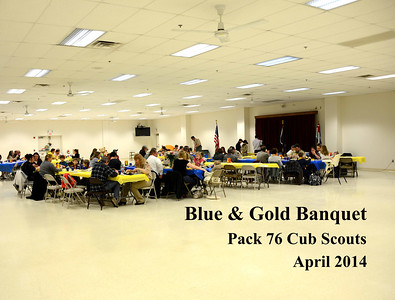 Blue & Gold Banquet - 2013