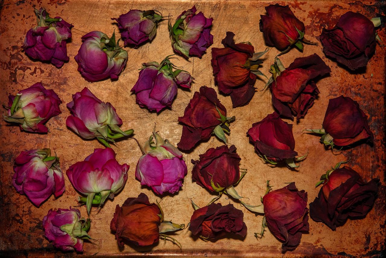 Retirement Roses