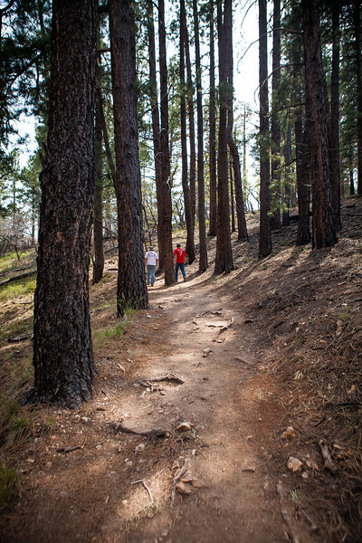 Trail between North Rim Trail and Campground