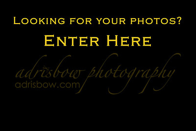Private Client Galleries- Enter Here