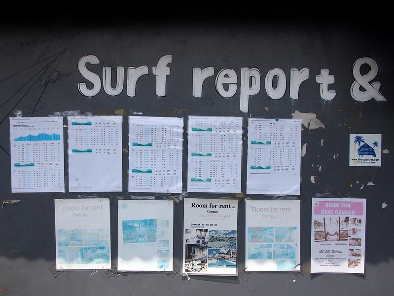 P5138006-surf-report.JPG