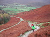 The Trail to Cat Bells