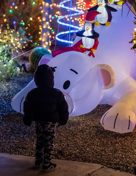 Christmas Lights in the Neighborhood  December 19, 2020  24_.jpg