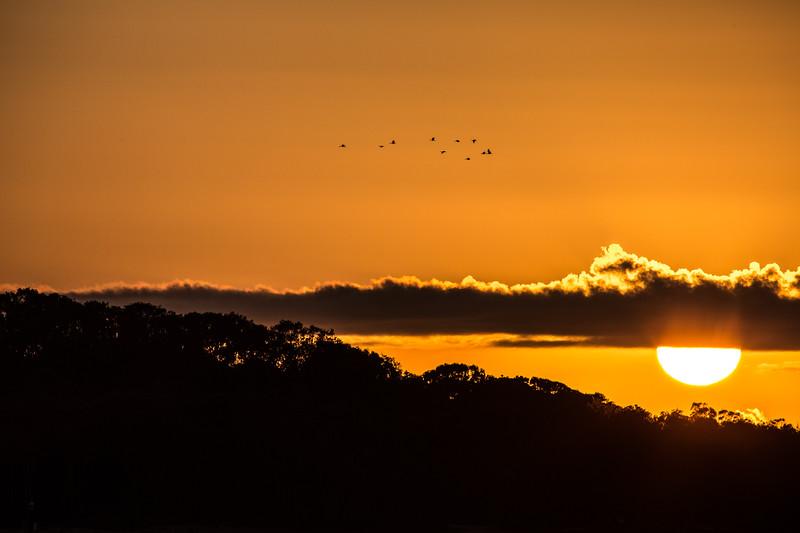 Sunrise, Maroochydore, Australia