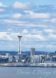 West Seattle modern