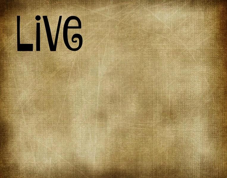 live 3.jpg