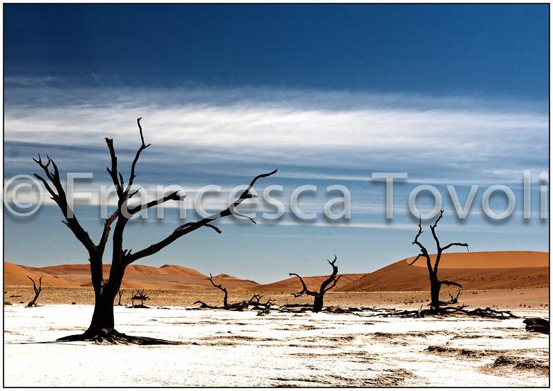 Namibia2 113.jpg