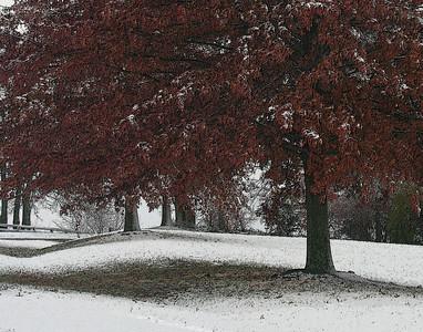 Snow Day 2008