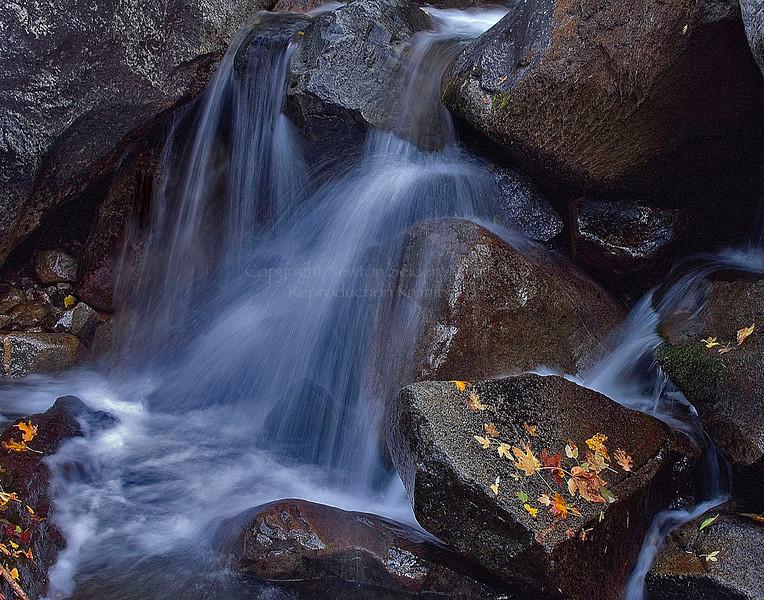 Bridelveil Creek Yosemite, California