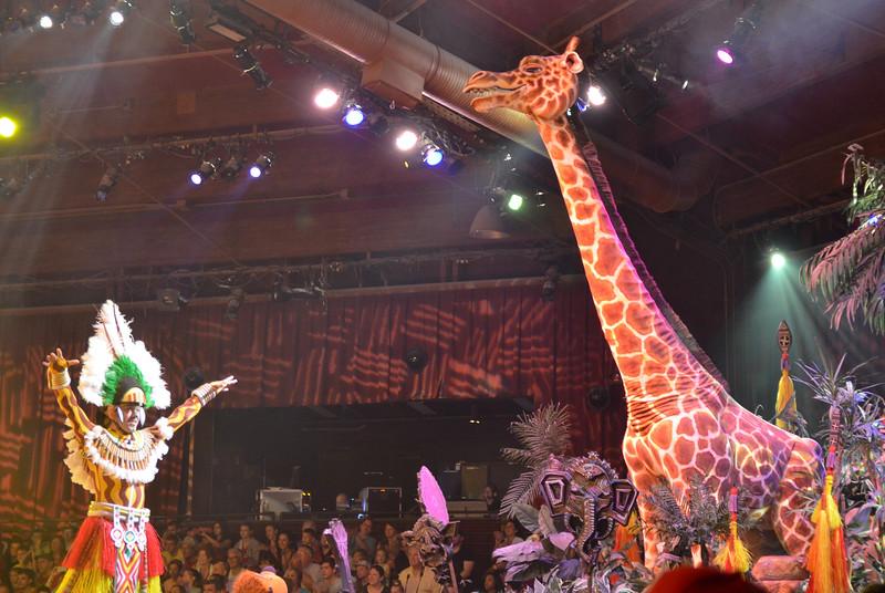 Disney Animal Park March, 2013-DSC_0287-012.jpg