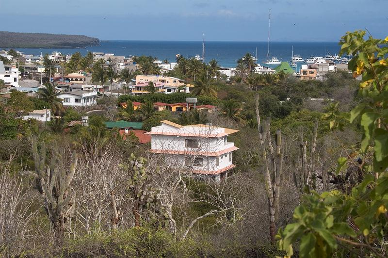 View of Puerto Ayora   (Dec 09, 2005, 03:32pm)