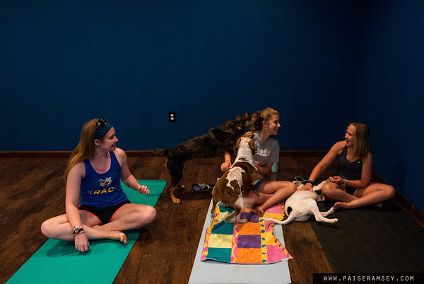 2019 (June) Paws and Anderson Yoga center