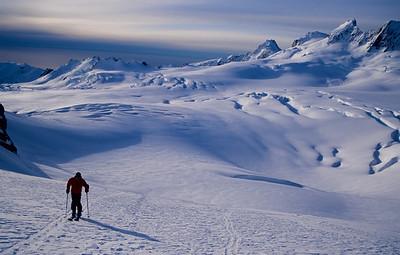 Fox - Franz Josef glaciers