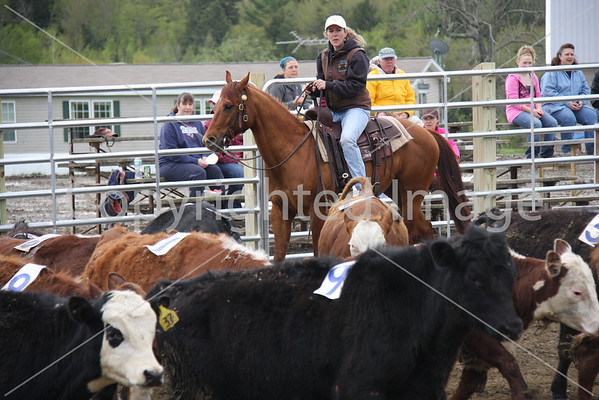 Team Penning Clinic 5/22/11