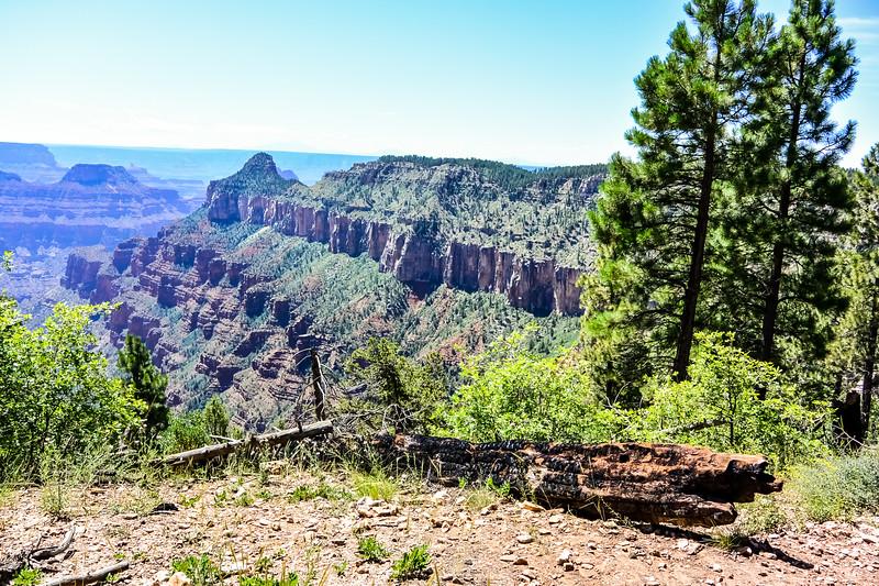 2019 Grand Canyon-210.jpg