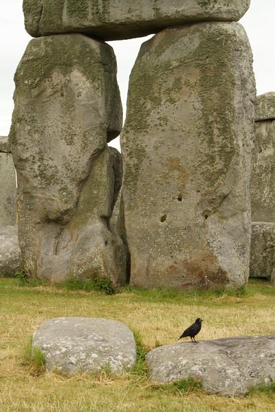 Stonehenge4.jpg