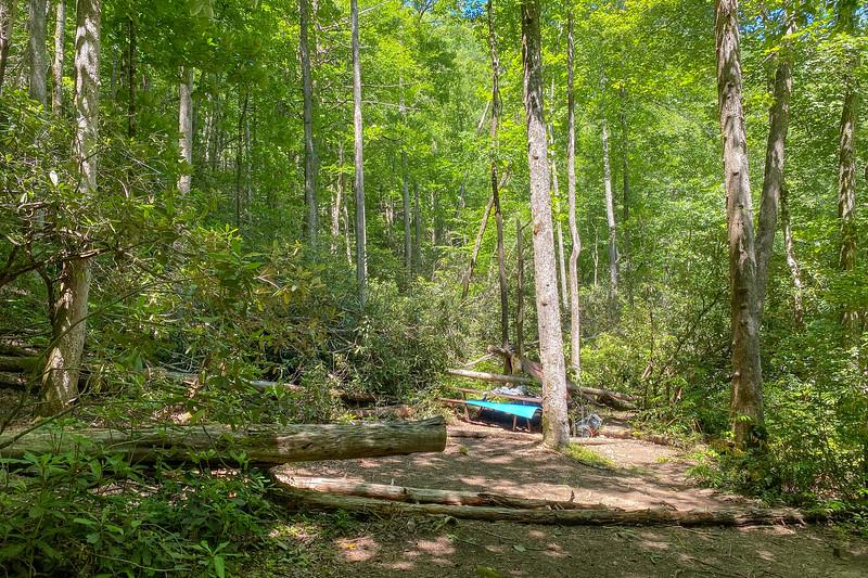Boxcar Falls/Rail Grade Path @ Campsite -- 2,360'