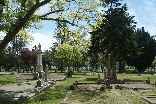 Study: Ross Bay Cemetery