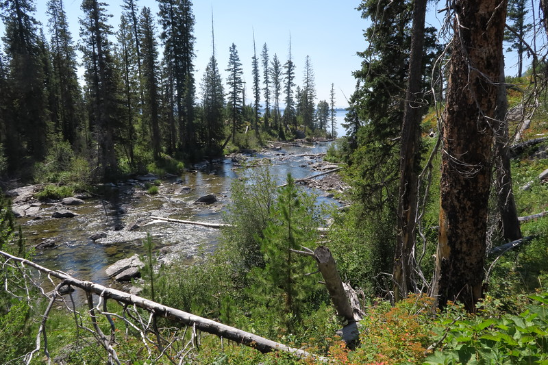 String Lake flows into Jenny Lake - Grand Teton National Park