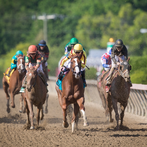 Keen Pauline (Pulpit) wins The Blackeyed Susan at Pimlico on 5.15.15. Javier Castellano up, Dale Romans trainer, Stonestreet Stables owners.