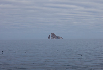 Kicker Rock and Dingy ride