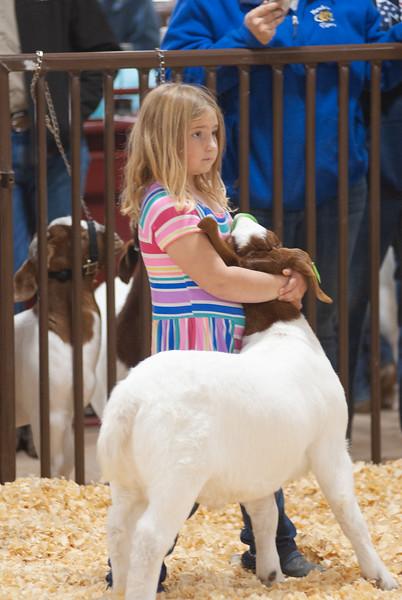 Kay County Goat Showdown