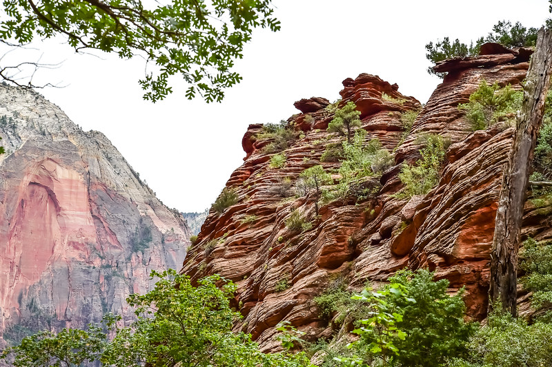 2019 Grand Canyon-12.jpg