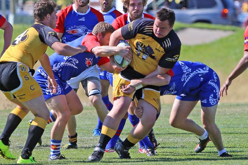 Wayne State College Rugby No Watermark