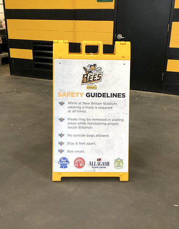 Bees Guidelines 7-16-20